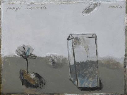 20080419 Paradossi padani - Alfredo Casali, paesaggio trasparente
