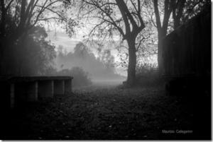 Maurizio Callegarin, il valore dell'ombra