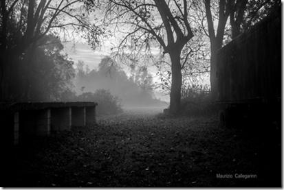 Il valore dell'ombra – Maurizio Callegarin